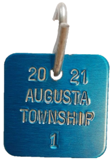 photo of a 2021 dog tag