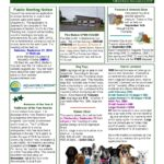 Augusta Quarterly - Fall 2019 Page 01