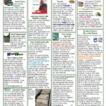 augusta quarterly - spring edition page 2