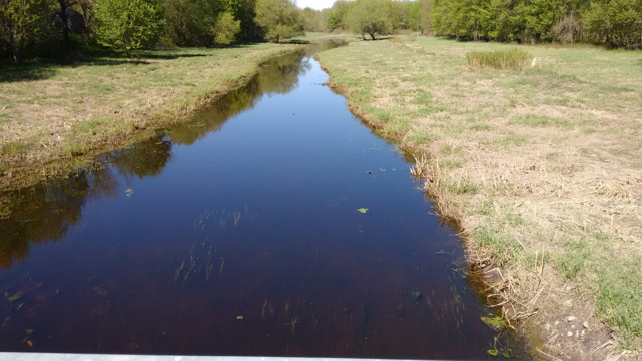 Downstream Side of South Nation River off Charleville Bridge - May 22, 2020