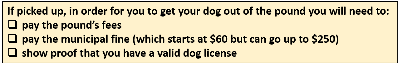 if picked up, in order for you to get your dog out of the pound, you will need to: pay the pound's fees, pay the municipal fine (which starts at $60 but can go up to $250) and show proof that you have a valid dog license.