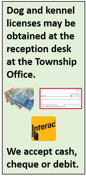 says dog and kennel licenses may be obtained at the reception desk at the township office. we accept cash, cheque or debit
